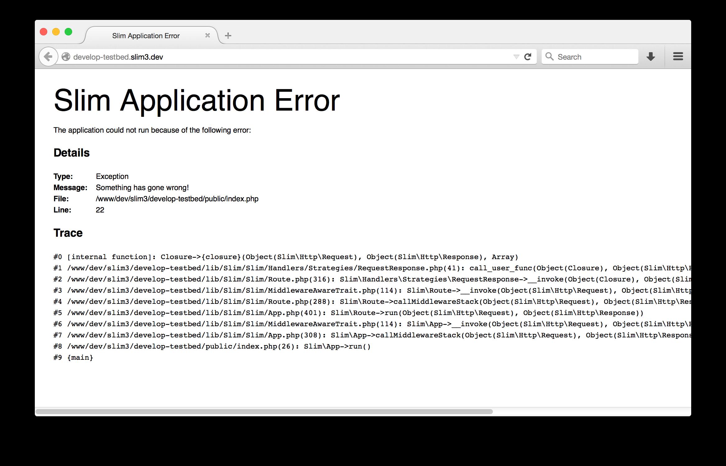 Slim3 error page